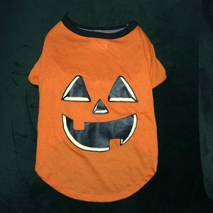Other - 🎃 Dog Jack-O-Lantern Halloween Costume - Medium